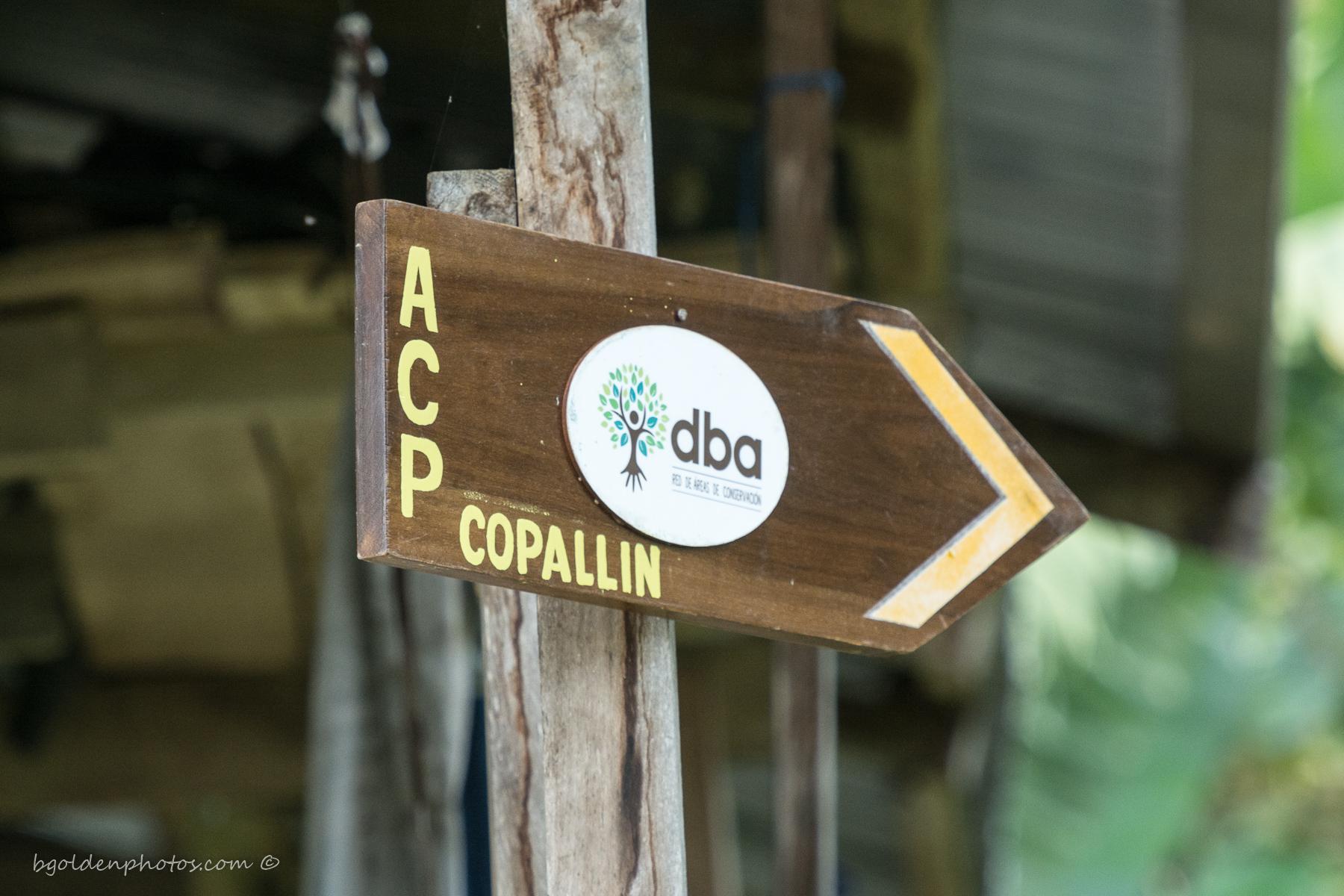 ACP Trailhead