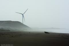Wind Turbine on the Desert Coast