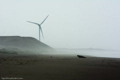Wind Turbine on the Desert Coast
